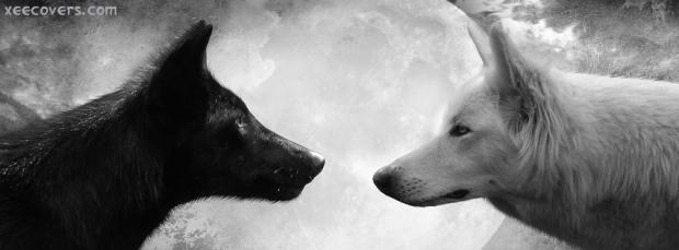 Black-Wolf-Vs-White-Volf
